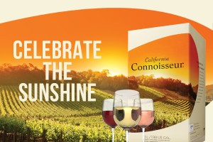 CalCon Celebrate the Sunshine